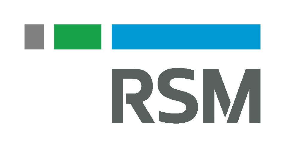 revised RSM Standard Logo Spot